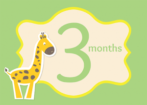 3 months card