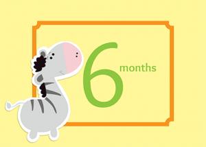 6-months-web