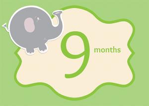 9-months-web
